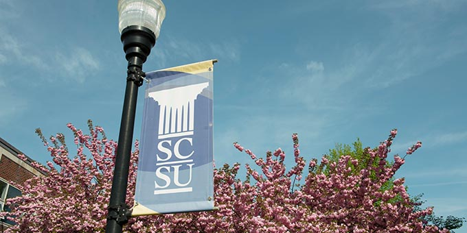 trees and SCSU flag